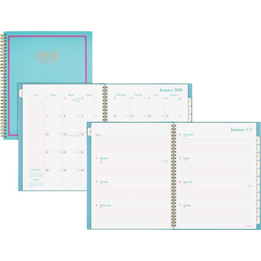 at a glance color crush weekly monthly appointment planner servmart