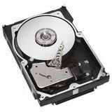Seagate Technology ST373307LC Cheetah 10K.6 Hard Drive