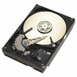 Seagate Technology ST3160023AS Barracuda 7200.7 Hard Drive