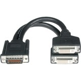 Cables To Go LFH-59 to DVI Break-out Cable