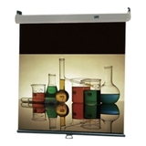 Draper Luma 2 Manual Wall and Ceiling Projection Screen 206085