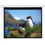 "AccuScreens Electric Projection Screen - 92"" - 16:9 800013"