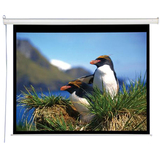 "AccuScreens Electric Projection Screen - 96"" - 4:3 800011"