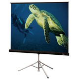 "Draper Diplomat Electric Projection Screen - 136"" - 1:1 - Portable 213016"
