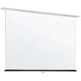 Draper Apex Manual Projection Screen