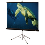 Draper Diplomat/R 215005 Projection Screen