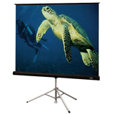 Draper Diplomat/R 215001 Portable Projection Screen