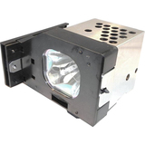 eReplacements Panasonic TY-LA1000 Projection TV Lamp