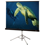 Draper Diplomat Portable Projection Screen 213006