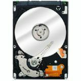 Seagate EE25 ST940817AM 40 GB Internal Hard Drive