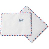 Quality Park Survivor USPS Air Mail Mailer