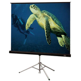 Draper Diplomat/R Tripod Projection Screen
