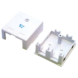 StarTech.com Dual Outlet Universal Wall Box - White WALLBOX2KWH