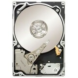Seagate Constellation ST9500530NS 500 GB Internal Hard Drive