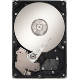 Seagate ST320005N4D1AS-RK 2 TB Internal Hard Drive
