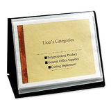Lion Flip-N-Tell Display Book-N-Easels