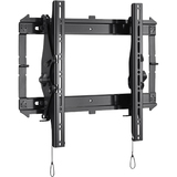 Chief RMT2 Wall Mount