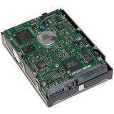 Hewlett Packard Enterprise 289243-001 Ultra320 SCSI Internal Hard Drive