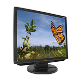 "CTL 192LX 19"" LCD Monitor - 4:3 - 5 ms - MT192LX"