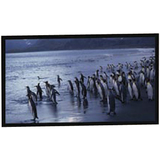 AccuScreens SoundScreen 80018 Projection Screen 80018