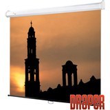 Draper Luma Projection Screen 700242