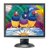 Viewsonic VA926g 19' LCD Monitor