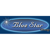 Blue Star BR30 Radio Battery