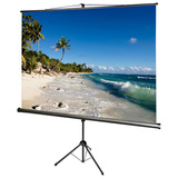 AccuScreens 800069 Manual Projection Screen