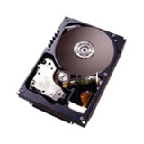 IBM 49Y2048 600 GB Internal Hard Drive
