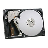 "Lenovo 300 GB 3.5"" Internal Hard Drive 67Y2616"