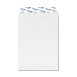 Quality Park Grip-seal Catalog Envelopes CO925