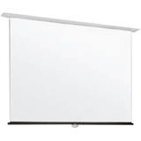 "Draper Apex 205006 Manual Projection Screen - 135.8"" - 1:1 205006"