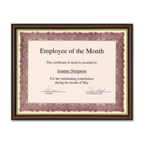 First Base Recognition Certificate Frame