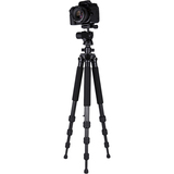 Dolica ZX600B300 - Professional Carbon Fiber Tripod with Balanced Ball - ZX600B300