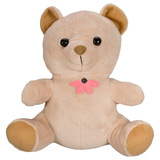 KJB Security Products, Inc TB300 Hardwired Teddy Bear Camera