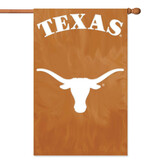 Party Animal Texas Applique Banner Flag - AFUT