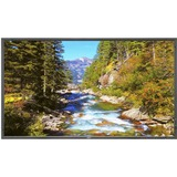 """NEC Display 70"""" LED Backlit Commercial-Grade Display with Integrated Tuner E705-AVT"""