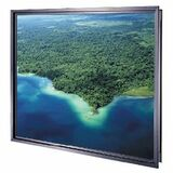 Da-Lite Polacoat Rear Projection Screen