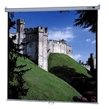 Da-Lite Deluxe Model B Manual Wall and Ceiling Projection Screen 74696