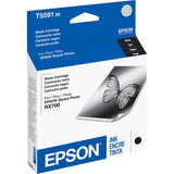 Epson Black and Color Ink Cartridge For Stylus Photo RX700 Printer - T559120