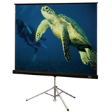 "Draper Diplomat Manual Projection Screen - 99"" - 1:1 - Portable 213003"