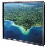 Da-Lite Polacoat Rear Projection Screen (Da-Glass)
