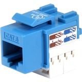 StarTech.com Cat 6 RJ45 Keystone Jack Blue - 110 Type C6KEY110BL