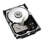 Seagate Technology ST373207LC Cheetah 10K.7 Ultra320 SCSI Hard Drive