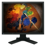 Eizo FlexScan S2100 21.3&quot; LCD Monitor - 16 ms S2100-BK