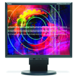 NEC Display Solutions 60001491 MultiSync LCD2170NX-BK LCD Monitor