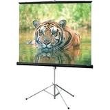 "Draper Consul Electric Projection Screen - 99"" - 1:1 - Portable 216010"