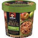 Quaker Oats Real Medleys Apple Walnut Oatmeal