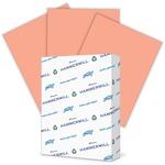 Hammermill Super-Premium Paper HAM103119