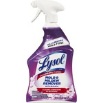 Lysol Mold and Mildew Remover with Bleach RAC78915